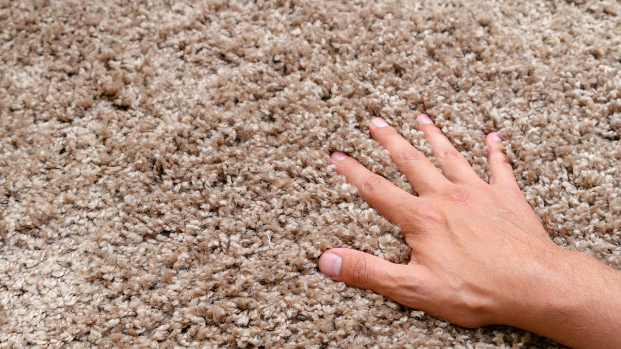 Important Tips on Shopping for Carpets by the Season
