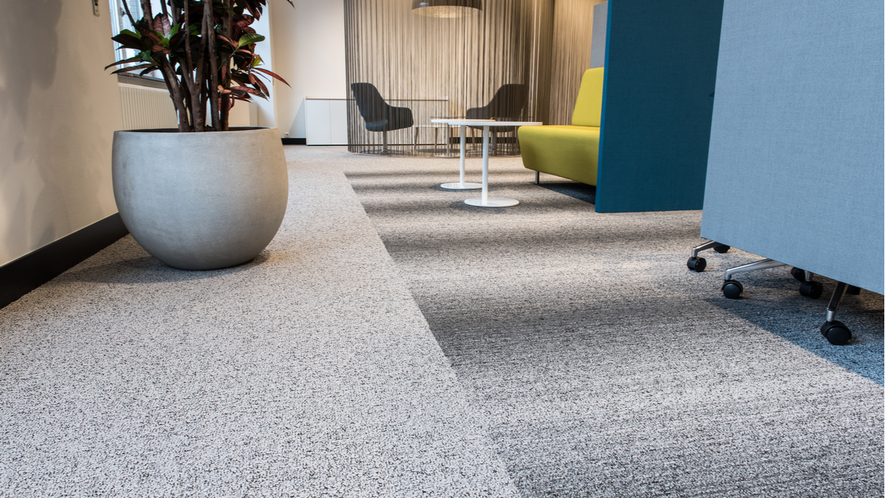 The 3 Easiest Types of Carpets to Clean and Maintain